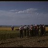 Test Plot supervisors at experimental farm.  Swift Current.  08/05/1957