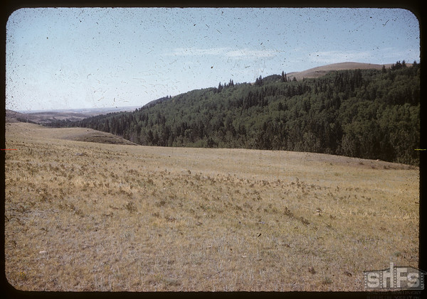 South Fork Valley.  South Fork.  08/07/1958