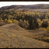 Pine Cree Park - Hillcrest Drive.  South Fork.  09/26/1956