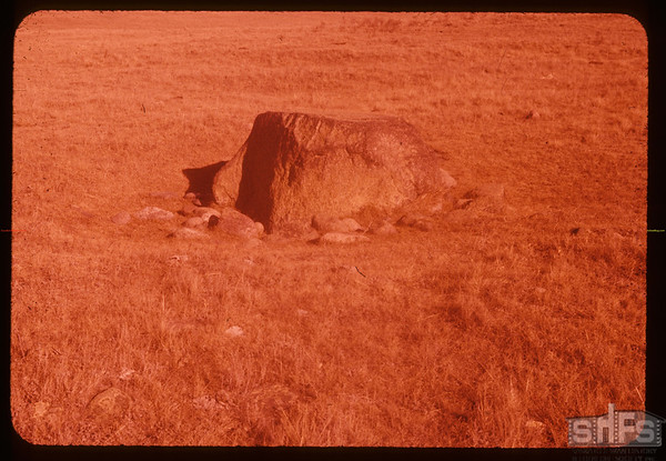 Buffalo scratching stone. Cadillac. 10/16/1957