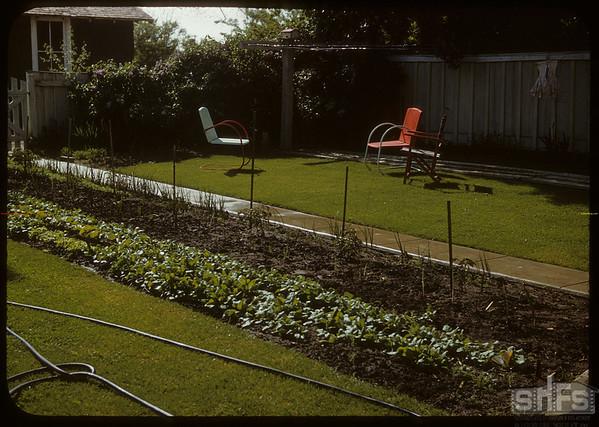 The Hosie back lawn.  Shaunavon.  06/12/1950