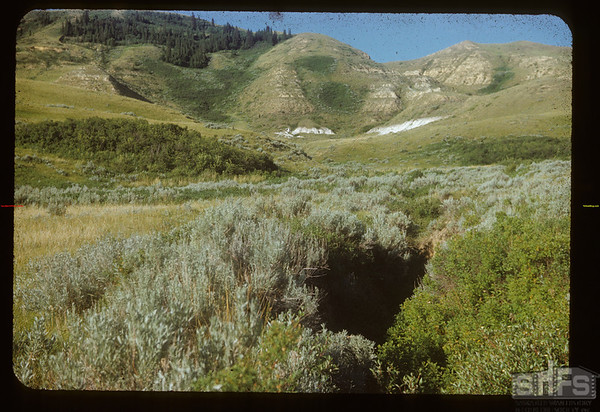 South side of White Mud valley..  Knollys.  07/15/1954
