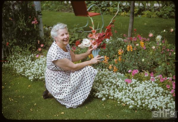 Mrs. J. C. Hossie and flower border..  Shaunavon.  09/08/1951