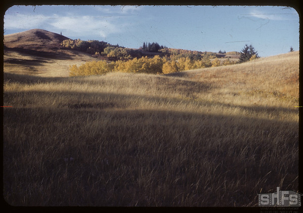 West side S. Fork Valley. Looking N.W..  South Fork.  10/06/1953