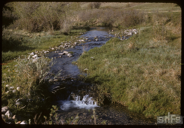 Bill Smith ranch.  South Fork.  05/18/1957