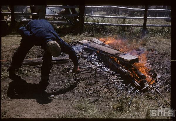 Hot Spot Lone Tree Branding Irons. Canuck. 06/25/1957