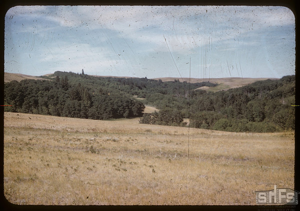 Bill Smith Ranch.  South Fork.  08/07/1958