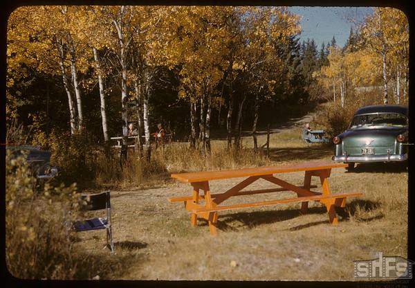 Picnic area # 1 - Pine Cree Park.  South Fork.  09/30/1956