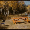 Picnic area # 1 - Pine Cree Park.  South Fork.  09/30/1956