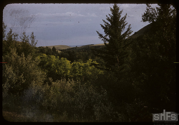 Beautiful South Fork Valley.	 South Fork.	 08/07/1956