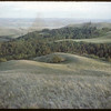 Wooded Area S.W. above Shaunavon Lease.  South Fork.  06/27/1954