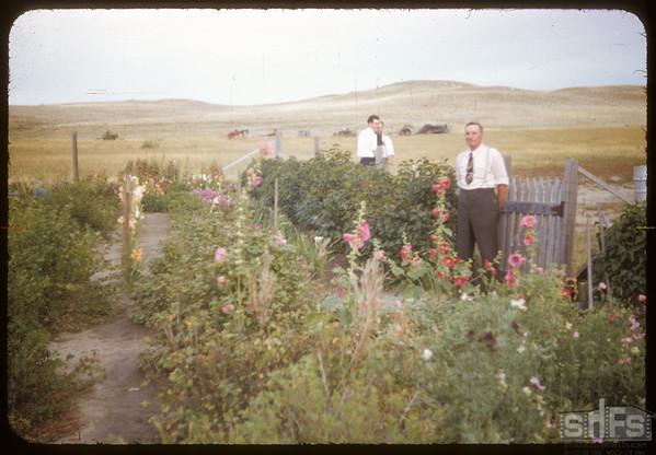 Rebbeck Garden.  South Fork.  09/07/1952