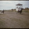 Shaunavon Fair - harness races.  Shaunavon.  07/27/1955