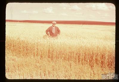 Leon Ruest in frozen wheat, Admiral,  08/26/1950
