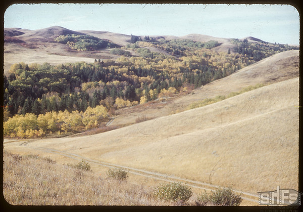 South Fork Valley.  South Fork.  10/04/1953