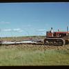Graham Holme cult. Matador co-op Farm.  Matador.  07/11/1951