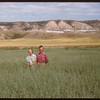 Mr & Mrs. Gubrey Phillips in a wheat field.  Ravenscrag.  08/15/1956