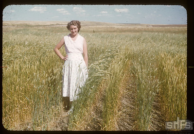 Doreen Nelson in test plot, 09/08/1950