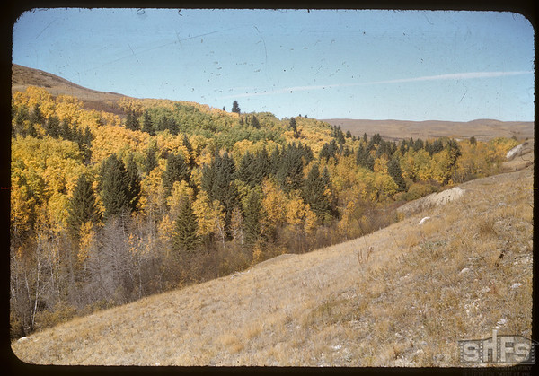 Bill Smith's hills north of Pine Cree Park.  South Fork.  09/30/1956
