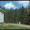 R. J. DeCock's home.  Wood Mountain.  08/07/1954