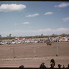Shaunavon rodeo - steer riding.  Shaunavon.  07/23/1957