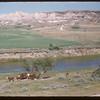 White Mud Valley at Wilf Pearson's.  Ravenscrag.  07/31/1956