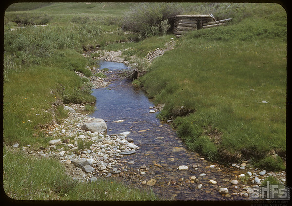 Bill Smith's milk house on South Fork of Swift Current Creek.  South Fork.  06/14/1953