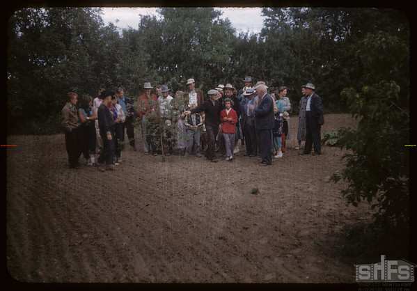 Dick Robbins entertains test plot people.  Shaunavon.  07/27/1956