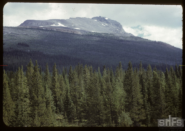 View between Lake Louise and Kicking Horse  Pass.  Lake Louise.  07/21/1951