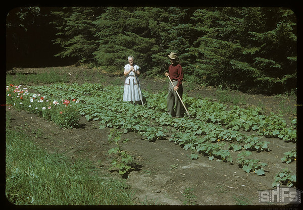 Mr & Mrs R. J. DeCock in 1 of 3 gardens.  Wood Mountain.  07/07/1954