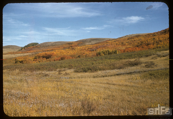 South Wood Mountain country.  Wood Mountain.  09/25/1957