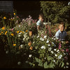 Bill Sharp's grandsonson Russ & Ted and flower garden..  Shaunavon.  08/10/1952