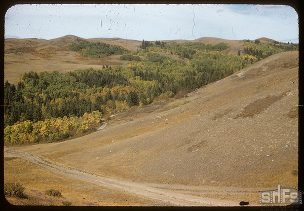 Old cart trail into South Fork valley.  South Fork.  09/22/1957