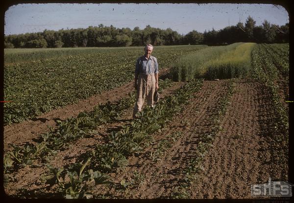 "R. P. (Dick) Robbins ""1951 World Wheat King"" standing in field.  Shaunavon.  07/19/1956"