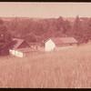 Bayard Benallack's farm yard.  Stone P.O..  08/01/1953