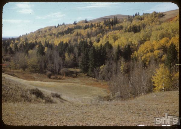 Toward N. End of S.F.V..  South Fork.  10/07/1951
