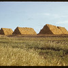 The pyramids - Loui Letourney's baled wheat hay.  Val Marie.  10/13/1950