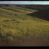 N. W. of Willis Ranch.  Eastend.  09/26/1954