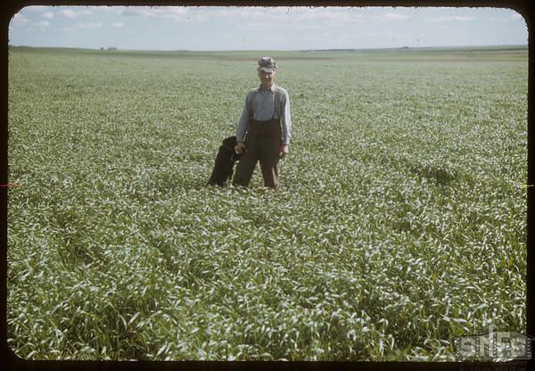 "R. P. Robbins ""1950 World Wheat King"".  Shaunavon.  06/30/1952"