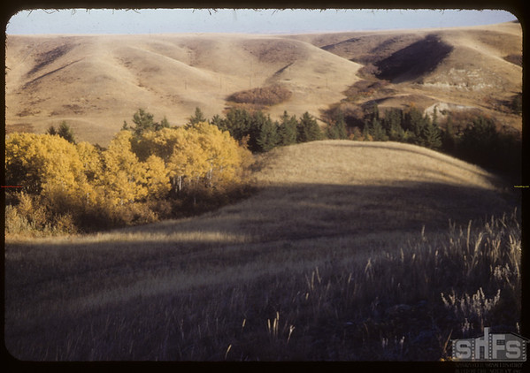 West side S. F. Valley. Looking E.-S.E..  South Fork.  10/06/1953
