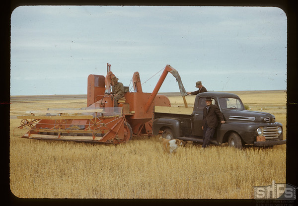 George Henry and his new co-op combine. Canuck. 09/08/1950