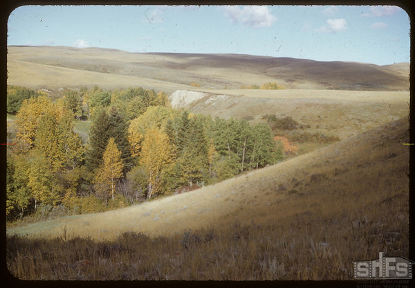 Bill Smith Ranch.  South Fork.  06/14/1953