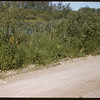 Marsh road north from Wawota.  Wawota.  08/09/1957