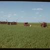Seeding machines at Experimental Farm.  Swift Current.  07/05/1950