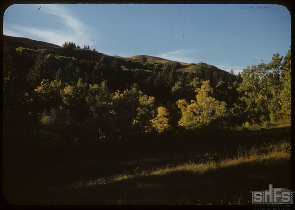 Evening in the S.F. Valley.  South Fork.  09/16/1951