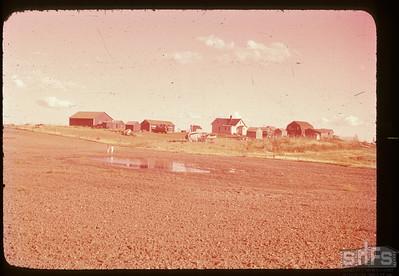 Leon Ruest farmstead, Admiral,  08/26/1950