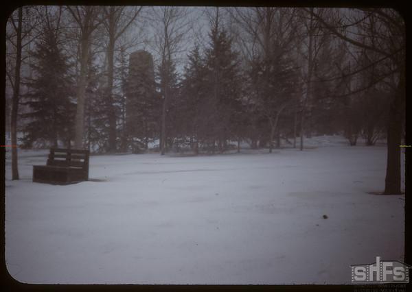 Snowing - Shaunavon park..  Shaunavon.  04/10/1950