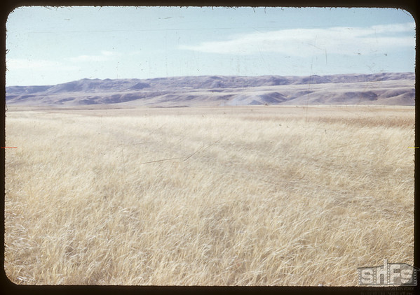 Cypress HIlls from above Rebbick's.  South Fork.  10/06/1953
