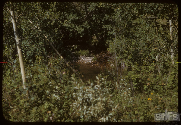 Swimming Hole in Mountain Stream.  South Fork.  08/20/1950