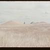 Tilferd Nesland storing 40 thousand bushels of wheat outside.  Frontier.  09/30/1953